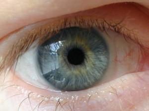 Fights Behind Most Eye Injuries