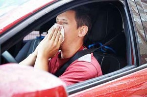 "Sneezing to Blame for ""Millions"" of Crashes"